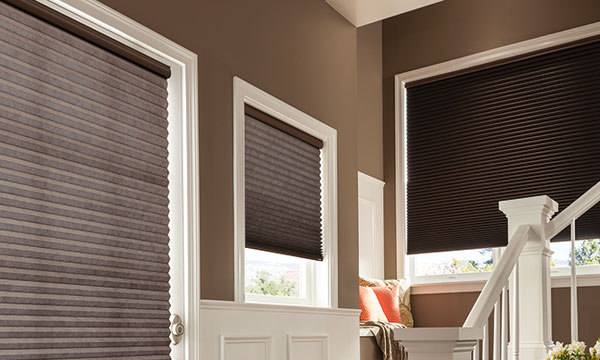 cellular shades myrtle beach