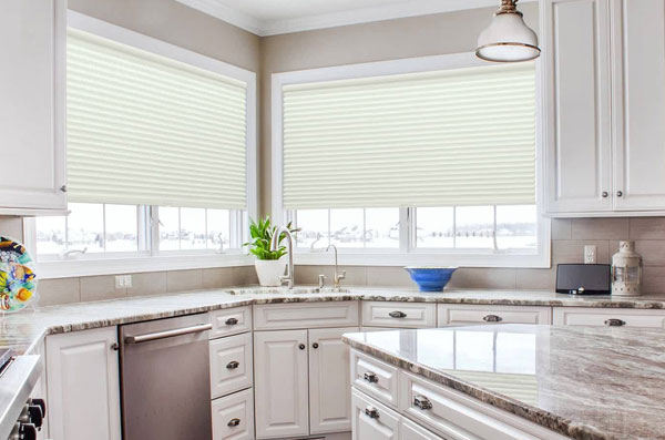 comfortex blinds myrtle beach